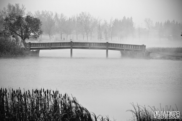 Nicholas Sheran Bridge