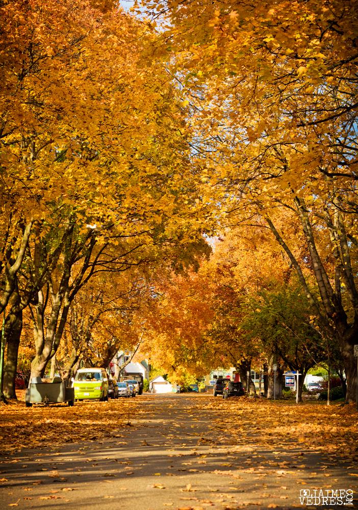 Maple Street Kelowna, BC, Canada