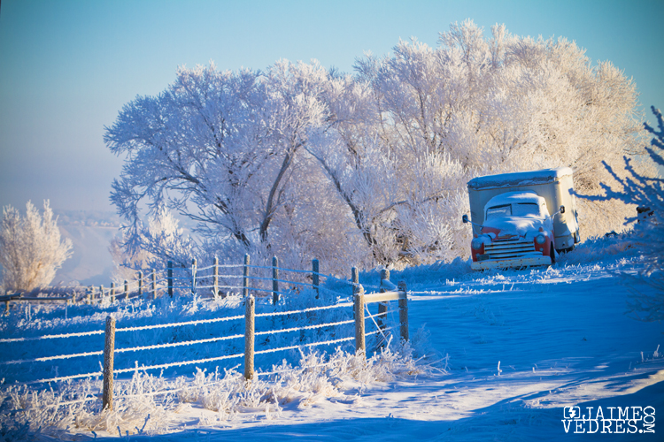 Lethbridge Frozen Morning