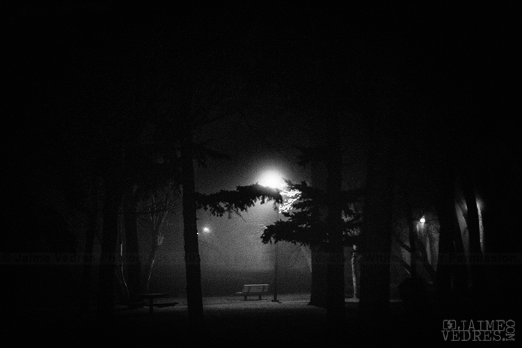 Henderson Lake Fog, Park Bench, Lethbridge