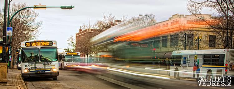 Lethbridge Transit Buses