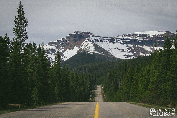 Waterton Lakes Road