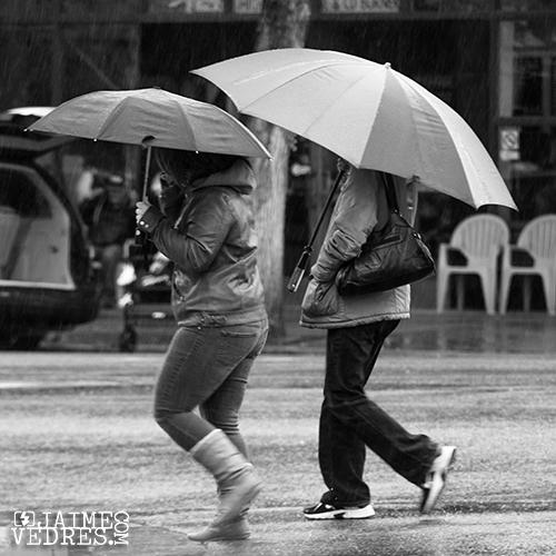 Rain & Umbrellas