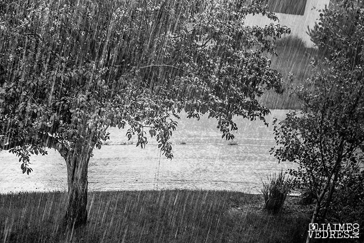 Calgary Rain