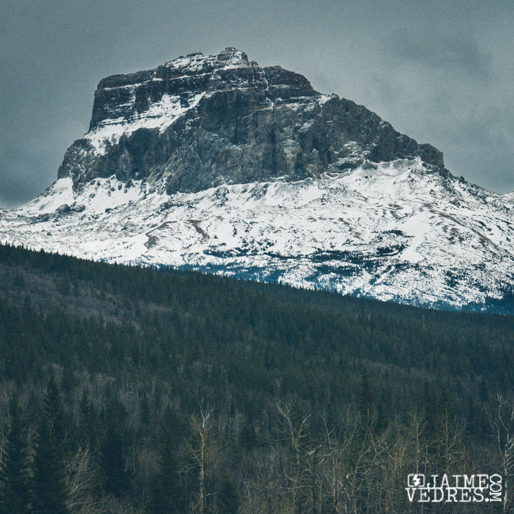 Chief Mountain Winter