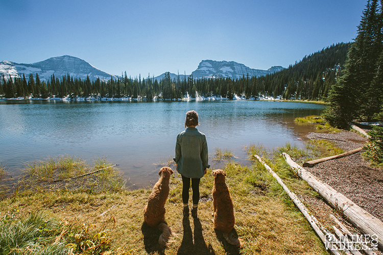 Summit Lake - Sabrina & Dogs