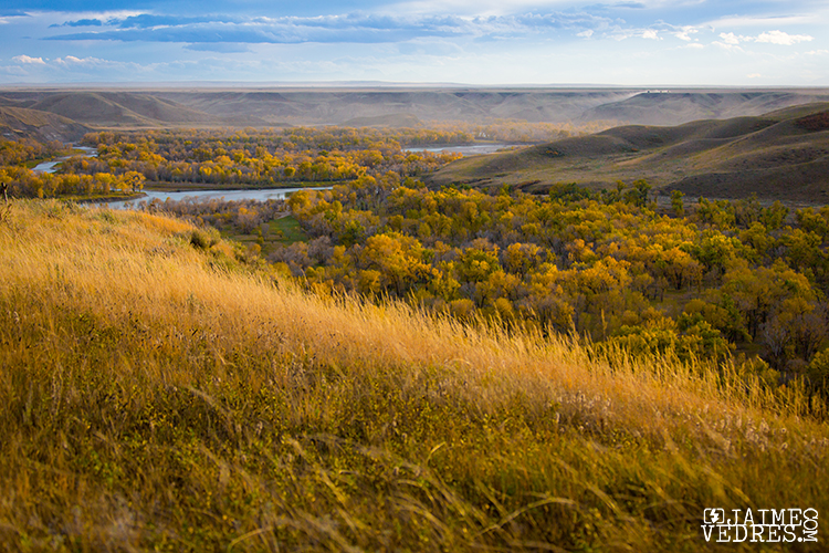 Lethbridge Fall Colours