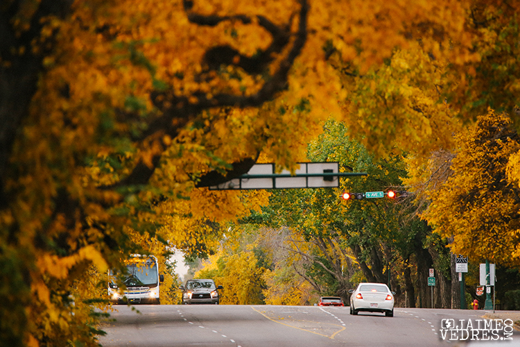 Lethbridge_Fall_13th