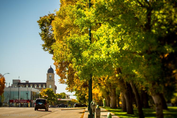 Downtown Lethbridge, Fall, Galt Gardens