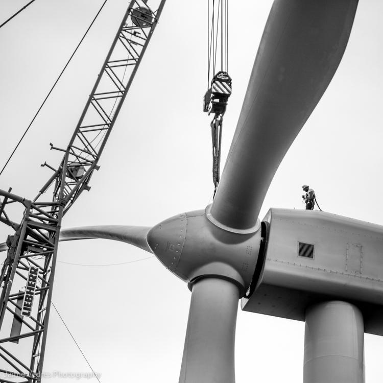 Wind farm Alberta