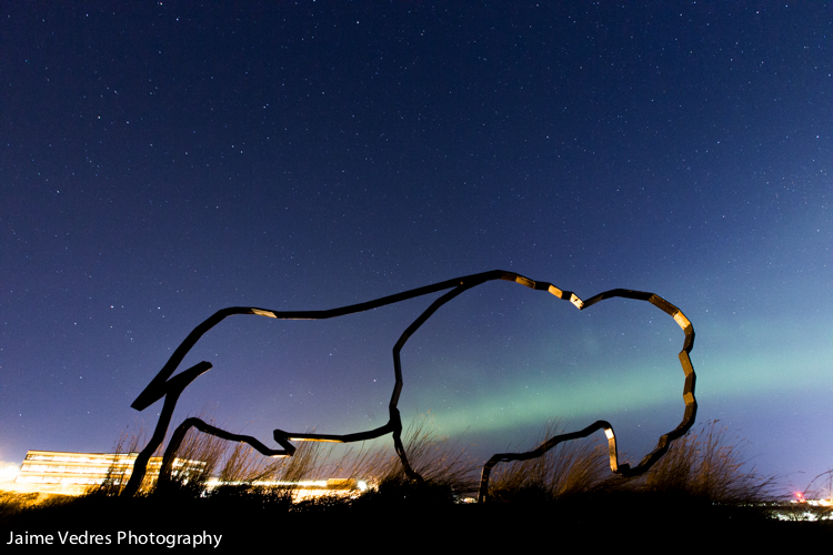 Northern Lights, Buffalo, Lethbridge, UofL, Uleth