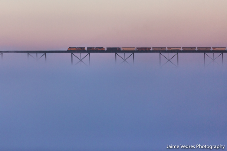 Highlevel Bridge, Train, Fog