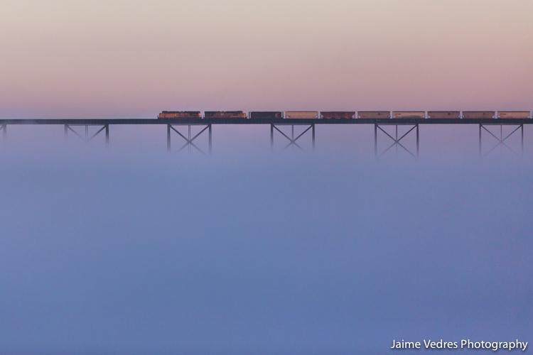 Highlevel Bridge, Train, Fog