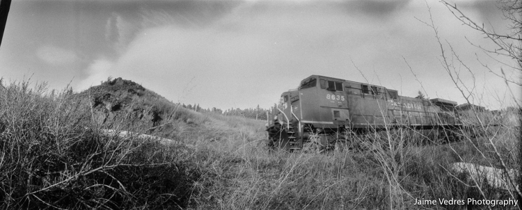 widelux_Train